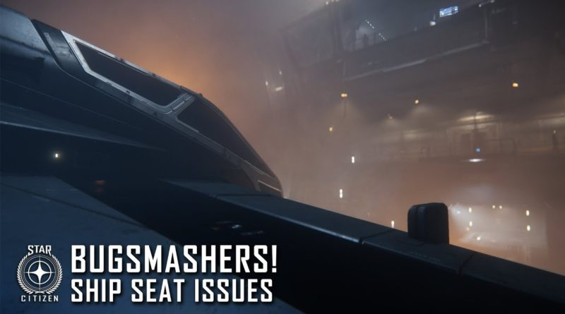 Bugsmashers! Ship Seat Issues