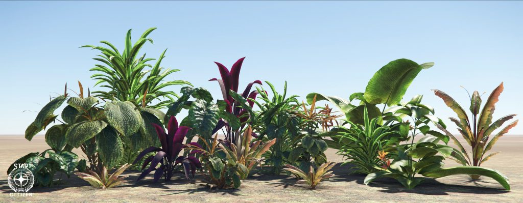 TM Environment Art New Babbage Flora Highres 2343