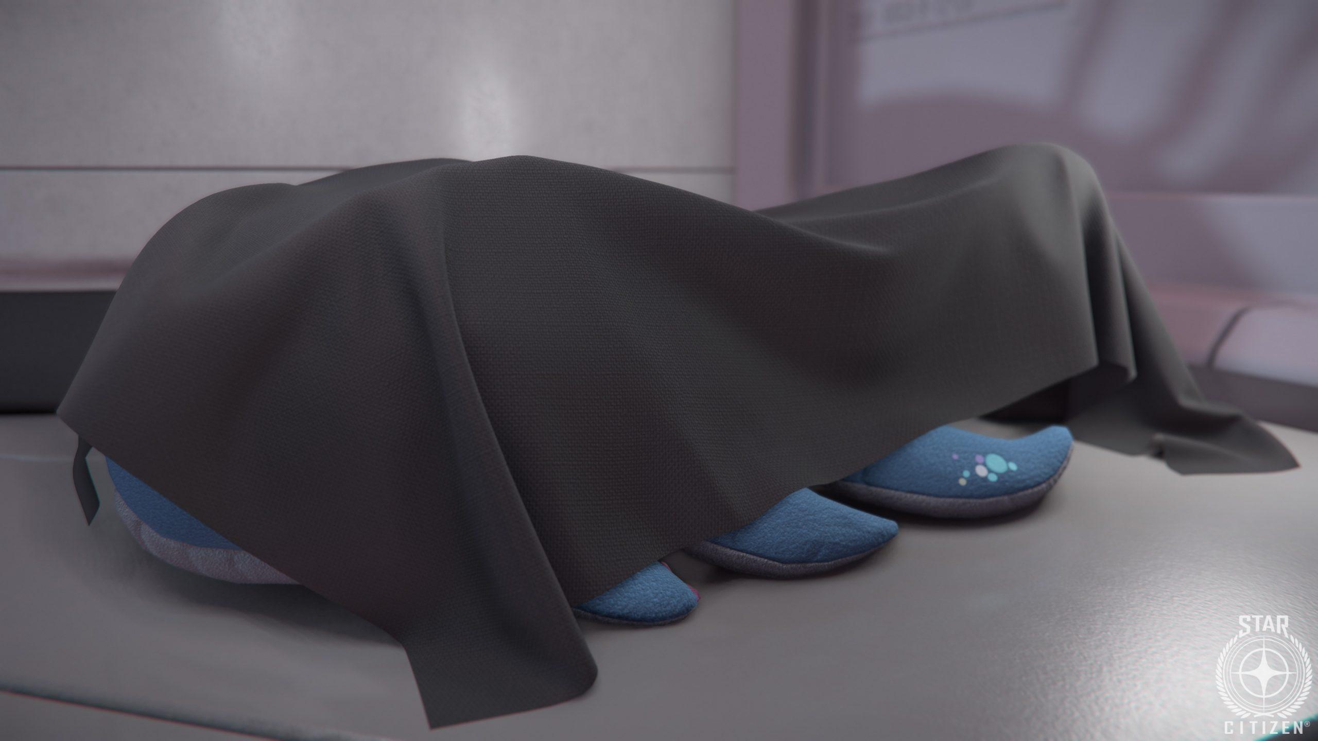 CloudImperiumGames StarCitizen Whale Plushy Sneak Peek 8348